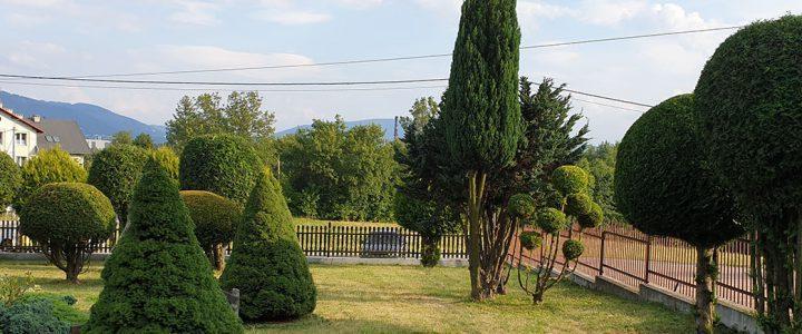 Ogródek parafialny nabiera kształtów